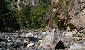 Sandstone clifs, Carnarvon Gorge.