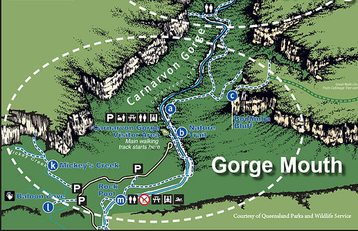 Carnarvon Gorge Map