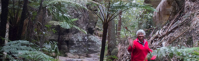 Wards Canyon, Carnarvon Gorge