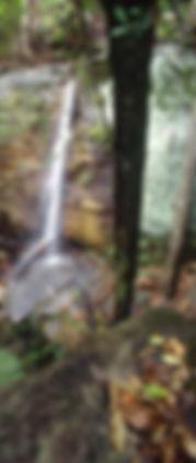 Lower Aljon Falls, Carnarvon Gorge