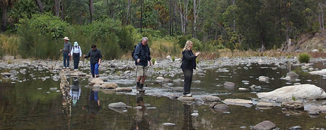Crossing Carnarvon Creek