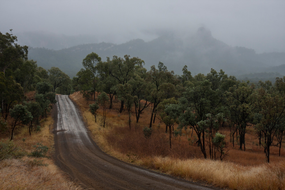 Rainy day in Carnarvon Gorge.