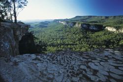 Boolimba Bluff, Carnarvon Gorge.