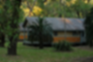 Safari Cabins nestle in among gum trees and ancient cycads at Carnarvon Gorge Wilderness Lodge.