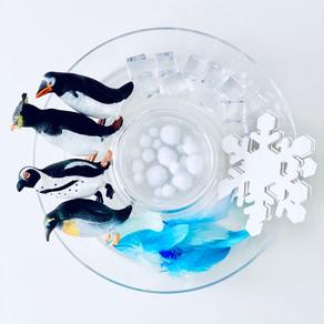 Polar Sink or Float