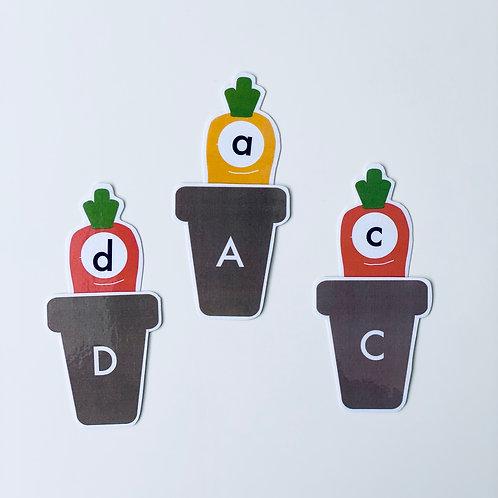 Carrot Numbers & Alphabet Activities