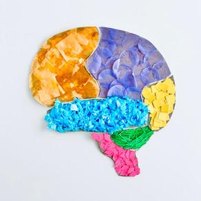 Textured Brain Puzzle