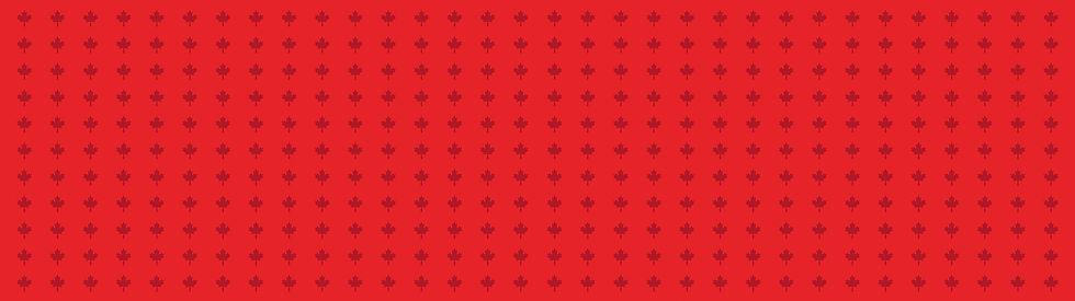 motif horizontal.jpg