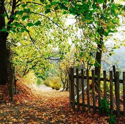 entrance our garden
