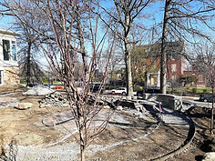 PG tree planting (01).jpg