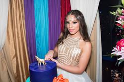 Nina's Sweet 16 Party-0944