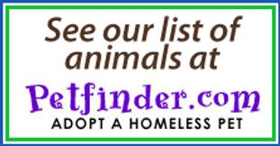 Claresholm Animal Rescue Society | CAReS