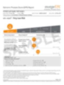 New_GPS_Report_Very_Low_Risk-1.jpg