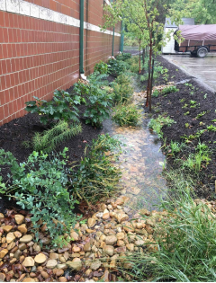 It's Raining, It's Pouring: Save that stormwater!