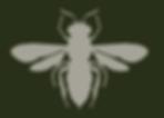 Hymenoptera.PNG