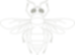 Hymenoptera_Detail_transparent.png