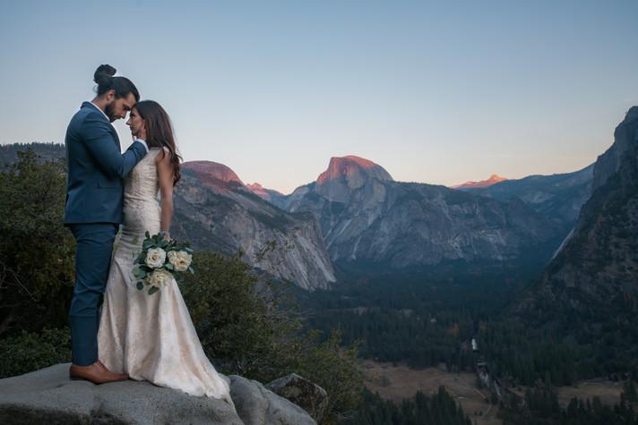 Wedding - Laura & Shayne