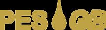 pesgb-logo.png