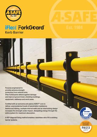 iFlex fork guard