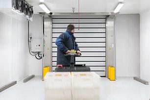 EFAFLEX deep freeze door for Zorbas storage room