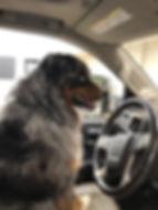 JACK DRIVING (2).jpg