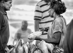Fish Seller #1