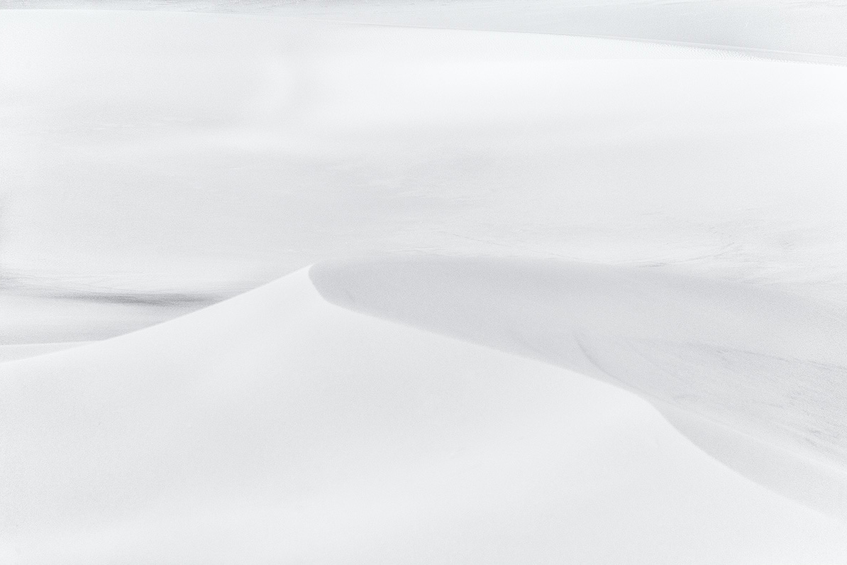 Gobi in White