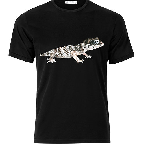 Knobtail Gecko
