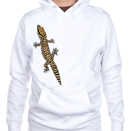 Northern Spotted Velvet Gecko