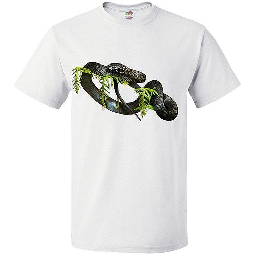 Stephen's Banded Snake, unbanded form
