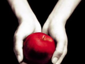 Reading Rewind: Twilight by Stephanie Meyer