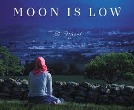 Review: When the Moon is Low by Nadia Hashimi