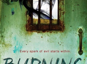 Review: Burning by Danielle Rollins