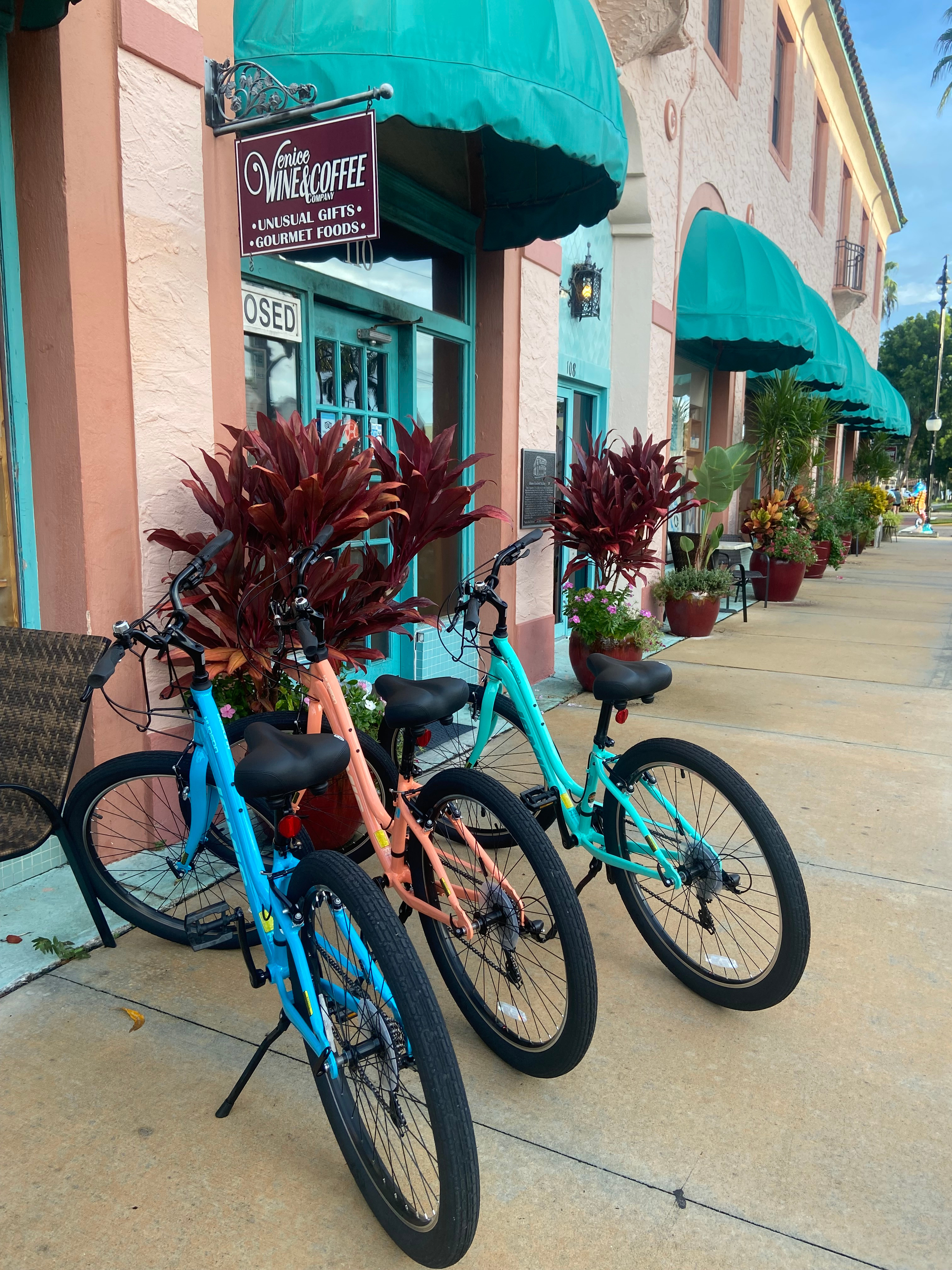 Venice Bicycle Tours - bike included