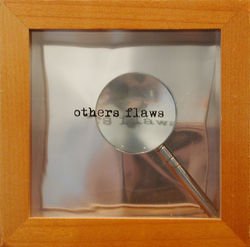 others_flaws