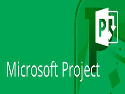 MS project1.jpg