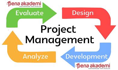 Project-management-image-final.png