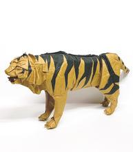 虎/Tiger