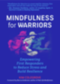 mindfullness for warriors book
