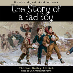 Story of a Bad Boy audio cover
