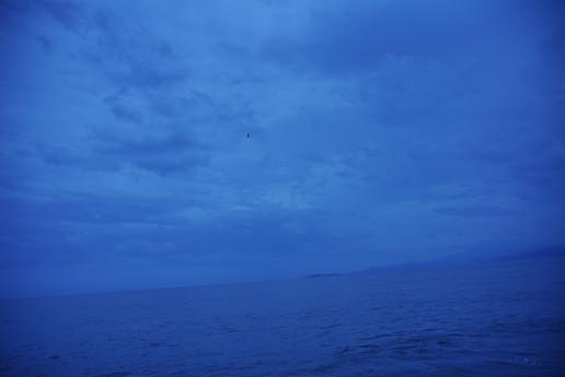 b06_ ミュゼオwashi無地薄dsc09648 (2020-07-24t1