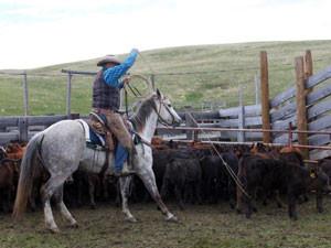 Ranchwork