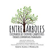ENTRE-ÁRBOLES.png
