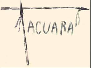 Tacuara: Esbozos sobre parte de su historia