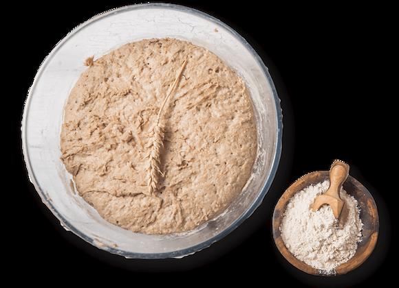 Workshop 3 - Brote und Brötchen aus Dinkel