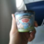 delt airlines ice cream