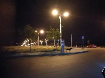 nightlife in tbilisi
