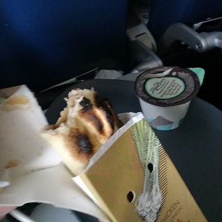 delta airlines pizza