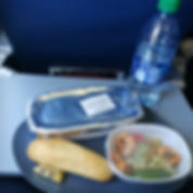 delta airlines food