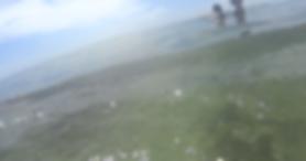 Miami Beach Ocean
